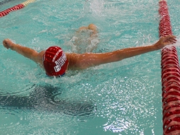 DISTRICT SWIMMING CARNIVAL 2014